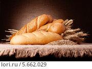 Купить «Натюрморт с батонами хлеба и колосьями пшеницы», фото № 5662029, снято 26 февраля 2013 г. (c) Natalja Stotika / Фотобанк Лори