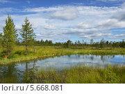 Купить «Летний пейзаж с озером, болотом и лесами», фото № 5668081, снято 12 июля 2013 г. (c) Валерия Попова / Фотобанк Лори