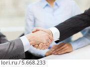 Купить «Деловое рукопожатие при заключении сделки», фото № 5668233, снято 9 ноября 2013 г. (c) Syda Productions / Фотобанк Лори