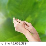 Купить «Мягкие нежные женские руки», фото № 5668389, снято 6 марта 2013 г. (c) Syda Productions / Фотобанк Лори