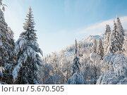 Купить «Зимние заснеженные горы», фото № 5670505, снято 20 января 2014 г. (c) Дмитрий Шульгин / Фотобанк Лори
