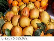 Спелые груши. Стоковое фото, фотограф Анвар Умаров / Фотобанк Лори