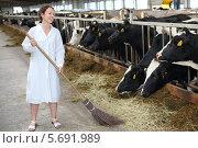 Купить «Молодая женщина в белом халате стоит с метлой в коровнике», фото № 5691989, снято 3 июня 2013 г. (c) Losevsky Pavel / Фотобанк Лори