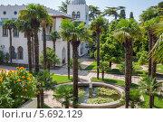 Купить «Двор во дворце Дюльбер с пальмами и фонтаном в Ялте, Крым», фото № 5692129, снято 24 августа 2013 г. (c) Losevsky Pavel / Фотобанк Лори