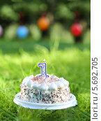 Купить «Именинный торт со свечей с цифрой один на лужайке», фото № 5692705, снято 20 июня 2013 г. (c) Losevsky Pavel / Фотобанк Лори