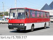 Купить «Автобус Ikarus 256», фото № 5709117, снято 14 августа 2009 г. (c) Art Konovalov / Фотобанк Лори