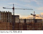 Купить «Строительство многоэтажного жилого дома», фото № 5709413, снято 7 ноября 2012 г. (c) Алексей Голованов / Фотобанк Лори
