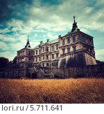 Подгорецкий замок в Львовской области (2013 год). Стоковое фото, фотограф Наталья Хлопушина / Фотобанк Лори