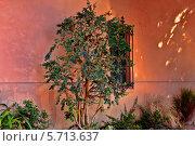 Купить «Фасад здания», фото № 5713637, снято 27 октября 2013 г. (c) Морозова Татьяна / Фотобанк Лори