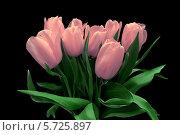 Купить «Букет розовых тюльпанов на черном фоне», фото № 5725897, снято 8 марта 2014 г. (c) Ласточкин Евгений / Фотобанк Лори
