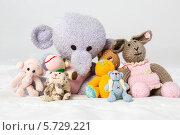 Купить «Коллекция вязаных мягких игрушек», фото № 5729221, снято 14 апреля 2013 г. (c) Losevsky Pavel / Фотобанк Лори