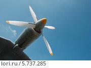 Воздушный винт самолета. Стоковое фото, фотограф Дмитрий Липавский / Фотобанк Лори