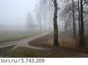 Купить «Туман в ноябре», фото № 5743209, снято 11 ноября 2013 г. (c) Ольга Коцюба / Фотобанк Лори
