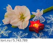 Купить «Розовый амариллис рядом с зажженной свечой», фото № 5743789, снято 17 ноября 2013 г. (c) Олеся Сарычева / Фотобанк Лори