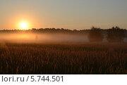 Купить «Август. Туман стелется по земле на рассвете», фото № 5744501, снято 13 августа 2013 г. (c) Ольга Коцюба / Фотобанк Лори