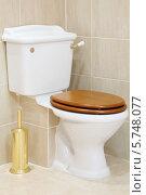 Купить «Красивый, чистый и белый туалет с деревянной крышкой», фото № 5748077, снято 25 января 2013 г. (c) Losevsky Pavel / Фотобанк Лори