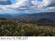 Купить «Панорамный вид на горные вершины Сихотэ-Алиня», фото № 5748237, снято 1 октября 2011 г. (c) Владимир Серебрянский / Фотобанк Лори
