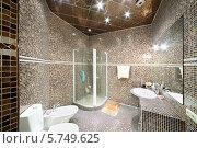 Купить «Интерьер ванной комнаты с коричневой мозаикой», фото № 5749625, снято 16 января 2013 г. (c) Losevsky Pavel / Фотобанк Лори