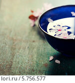 Купить «Цветы вишни в синей миске на деревянном столе», фото № 5756577, снято 12 марта 2014 г. (c) Наталия Кленова / Фотобанк Лори