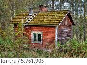 Деревянный старый крашенный домишко с трубой и заросшей крышей посреди летнего леса. Стоковое фото, фотограф Борис Смирин / Фотобанк Лори