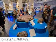 Купить «Экспозиция метеоритов в музее Урании в Московском планетарии», фото № 5768489, снято 22 марта 2014 г. (c) Володина Ольга / Фотобанк Лори