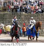Купить «Рыцарский турнир в Выборге», фото № 5773877, снято 10 мая 2013 г. (c) Юлия Селезнева / Фотобанк Лори