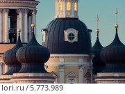 Купить «Купола Владимирского собора крупным планом, Санкт-Петербург», фото № 5773989, снято 15 июля 2020 г. (c) Смелов Иван / Фотобанк Лори