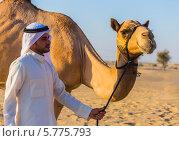 Купить «Мужчина с верблюдом в пустыне», фото № 5775793, снято 12 ноября 2013 г. (c) Олег Жуков / Фотобанк Лори