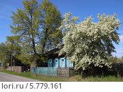 Домик в деревне. Стоковое фото, фотограф Екатерина Чернецкая / Фотобанк Лори