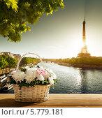 Купить «Цветы в корзинке на фоне Эйфелевой башни, Париж», фото № 5779181, снято 1 марта 2014 г. (c) Iakov Kalinin / Фотобанк Лори