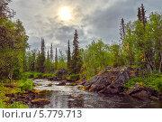 Купить «Мистический пейзаж на реке Полисарке. Кольский полуостров.», фото № 5779713, снято 9 августа 2013 г. (c) Олег Голиков / Фотобанк Лори
