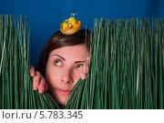 Девушка в траве, синий фон. Стоковое фото, фотограф Сергей Филимончук / Фотобанк Лори
