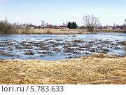 Купить «Луг, затопленный талыми водами», фото № 5783633, снято 6 апреля 2014 г. (c) Александр Романов / Фотобанк Лори
