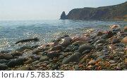 Купить «Пляж из гальки, мыс Фиолент, Севастополь», видеоролик № 5783825, снято 23 января 2020 г. (c) Александр Устич / Фотобанк Лори