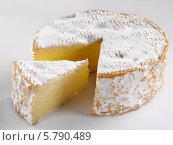 Купить «головка сыра», фото № 5790489, снято 14 августа 2018 г. (c) Food And Drink Photos / Фотобанк Лори