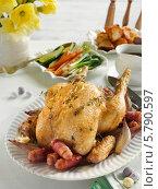 Купить «жареная курица на блюде», фото № 5790597, снято 15 октября 2018 г. (c) Food And Drink Photos / Фотобанк Лори