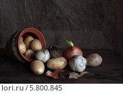Купить «Натюрморт с картофелем и чесноком на темном фоне», фото № 5800845, снято 3 апреля 2014 г. (c) Грачев Игорь / Фотобанк Лори