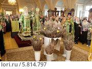 Купить «Вербное воскресение в Новодевичьем монастыре», эксклюзивное фото № 5814797, снято 12 апреля 2014 г. (c) Дмитрий Неумоин / Фотобанк Лори