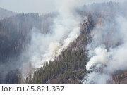 Лесной пожар. Стоковое фото, фотограф Галина Михалишина / Фотобанк Лори