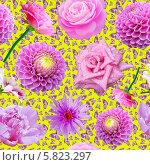 Купить «Бесшовный фон с цветами и бабочками», иллюстрация № 5823297 (c) Наталья Спиридонова / Фотобанк Лори