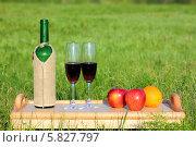 Купить «Пикник. Вино и фрукты на столике», фото № 5827797, снято 18 мая 2011 г. (c) Михаил Коханчиков / Фотобанк Лори