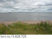 Летний пейзаж средней полосы России. Берег водоёма. Стоковое фото, фотограф Svet / Фотобанк Лори