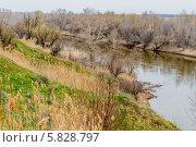 Река Ахтуба в Волгоградской области весной. Стоковое фото, фотограф Андрей Малышкин / Фотобанк Лори