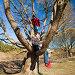 Два подростка залезли на дерево в солнечный день, фото № 5832297, снято 20 апреля 2014 г. (c) Tamara Kulikova / Фотобанк Лори