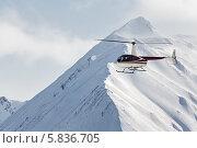 Купить «Вертолет Robinson R44 Astra летит в горах», фото № 5836705, снято 9 марта 2014 г. (c) А. А. Пирагис / Фотобанк Лори