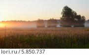 Купить «Рассвет. Туманное августовское утро», фото № 5850737, снято 13 августа 2013 г. (c) Ольга Коцюба / Фотобанк Лори