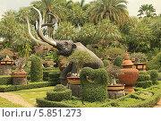 Купить «Таиланд. Тропический сад Нонг Нуч (Nong Nooch)», фото № 5851273, снято 22 февраля 2014 г. (c) Алексей Сварцов / Фотобанк Лори