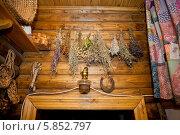 Купить «Народная медицина. Травы сушатся», фото № 5852797, снято 25 января 2014 г. (c) Alechandro / Фотобанк Лори