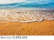 Купить «Песчаный пляж и волна», фото № 5858669, снято 6 августа 2013 г. (c) g.bruev / Фотобанк Лори