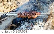 Шашлык на природе. Стоковое фото, фотограф Александр Нападов / Фотобанк Лори
